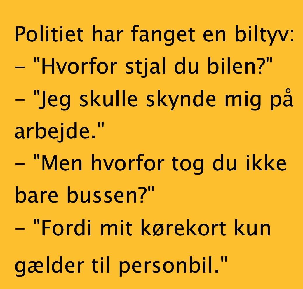 politiet moral danske ledsagere